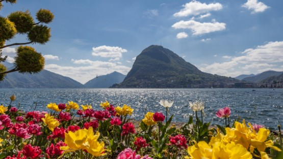 Living in Lugano