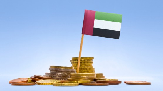 Less Hassle with Tax: Taxation in the UAE