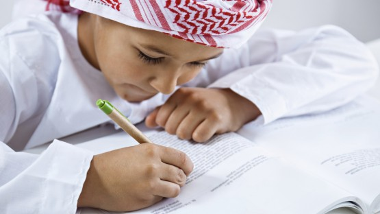 UAE Public Schools: How Times Have Changed