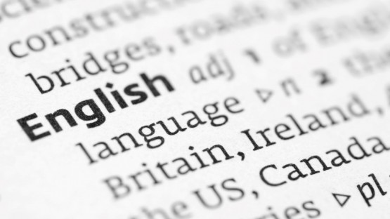 Is Knowing English Enough for Expats?