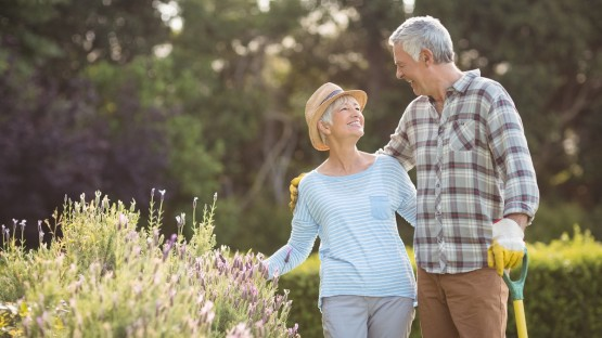 Social Security and Retirement Planning in France