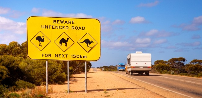 In Australia's more remote areas, e.g. on the famous Nullarbor Plain, the local wildlife can pose an accident risk to the unaware driver.