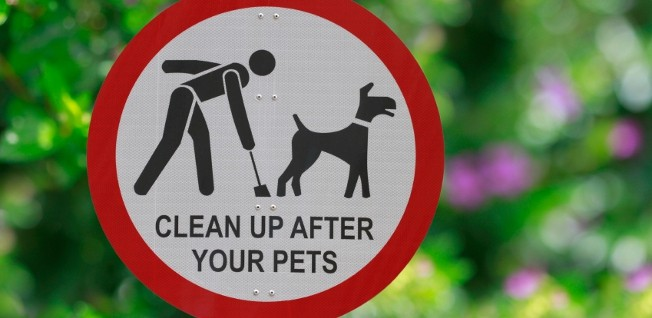 If you see such signs in a UK park, you'd better get ready to scoop the poop – or you may be fined.