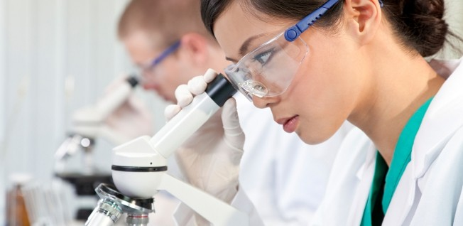 With special work permits, Germany wants to encourage the immigration of highly qualified staff from selected fields, especially STEM.