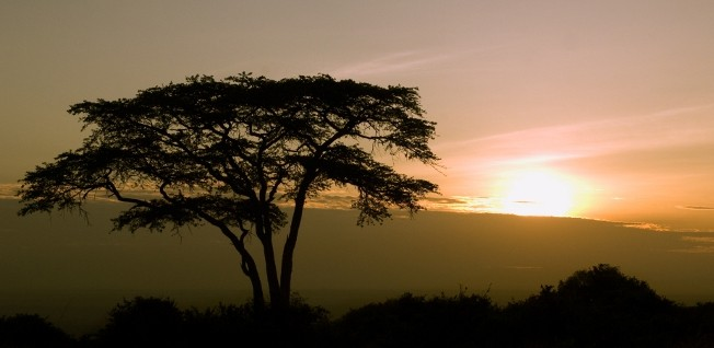 Scenic Nairobi National Park is not far from residential areas such as Langata.