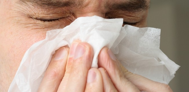 If you suffer from hay fever, prepare to use lots and lots of tissues in springtime.