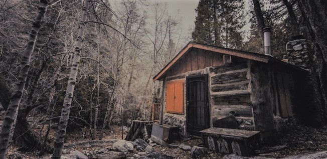 Abandoned Hut in Woods