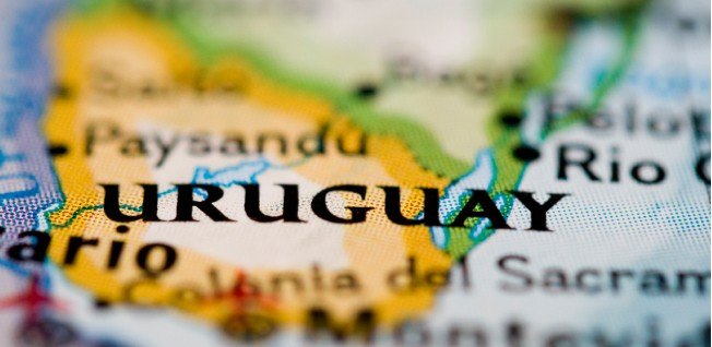 Uruguay is bordered by Argentina, Brazil, and the Atlantic Ocean.