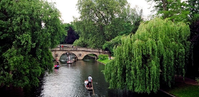 Central Cambridge, especially the parts along the river, is one of the greenest and leafiest towns in the UK.