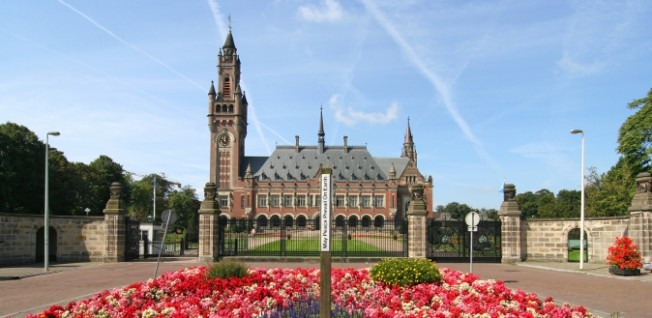 The Peace Palace houses  the International Court of Justice.