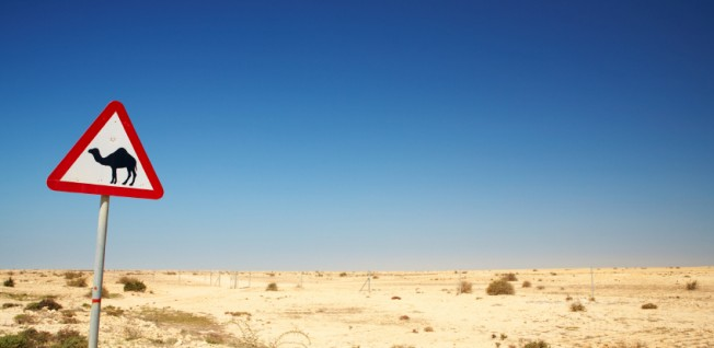 When you move to Qatar, take a trip to explore the magnificent desert landscape.